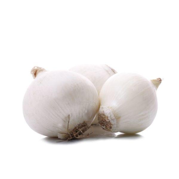 Photo Oignon blanc vrac null