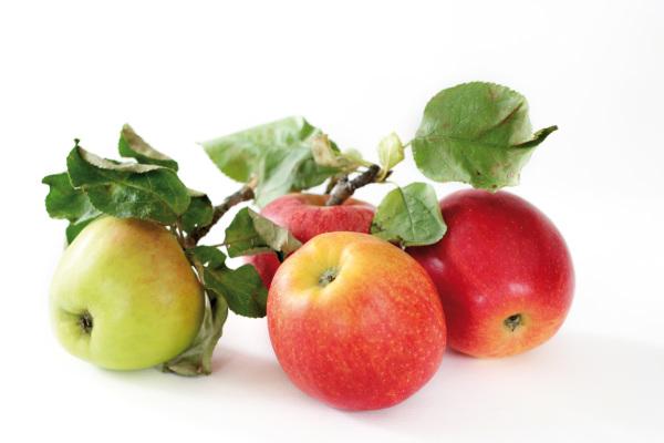 Photo Pomme bicolore null